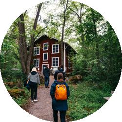 Mustila Arboretum on Pohjois-Euroopan merkittävin puulajipuisto